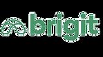 brigit_edited.png