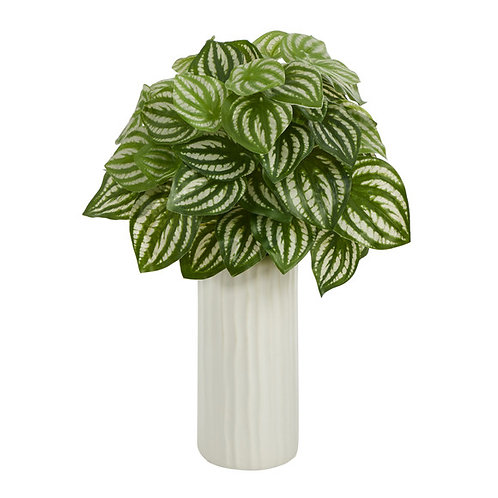 """15"""" Watermelon Peperomia Artificial Plant in White Planter (Real Touch)"""