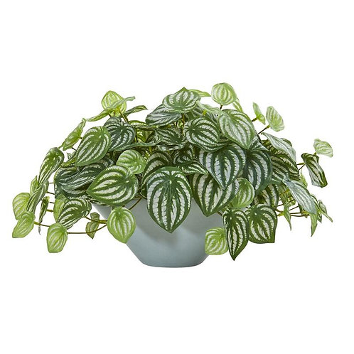 19' Watermelon Peperomia Artificial Plant in Green Vase (Real Touch)
