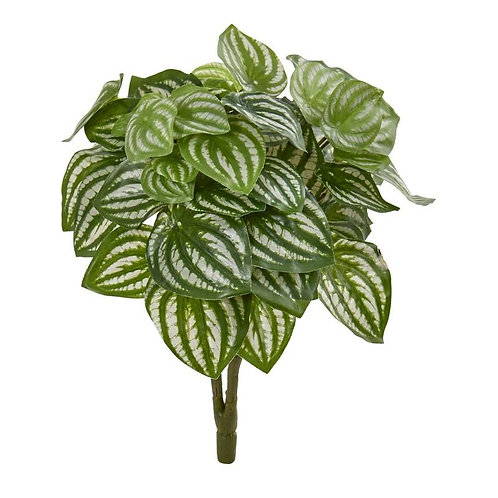 """14""""  Watermelon Peperomia Artificial Plant (Set of 6) (Real Touch)"""
