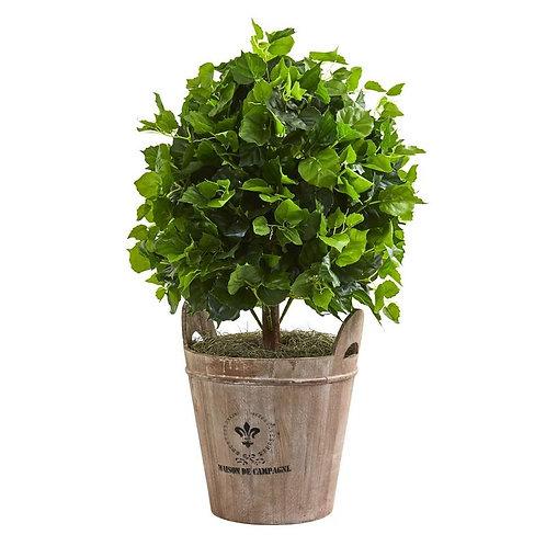 2.5' Ficus Artificial Tree in Farmhouse Planter