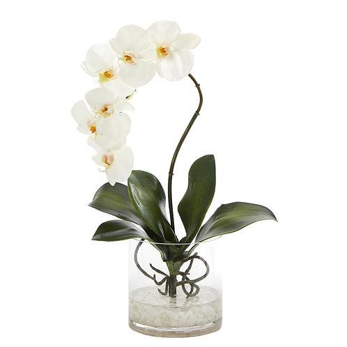 "17"" Phalaenopsis Orchid Artificial Arrangement in Glass Vase"