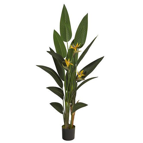 6' Bird of Paradise Artificial Plant