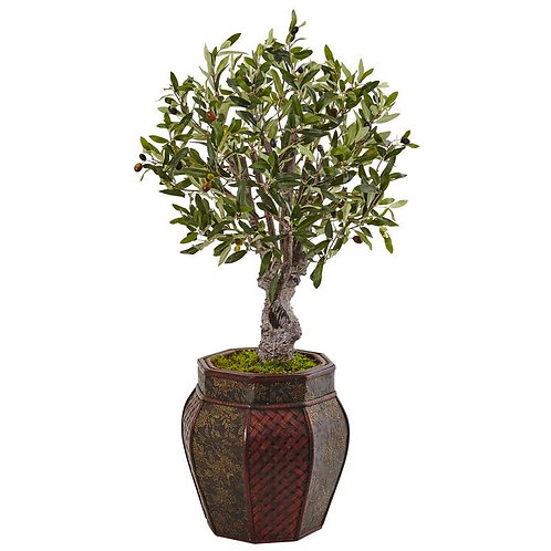 3' Olive Tree in Weave Panel Planter