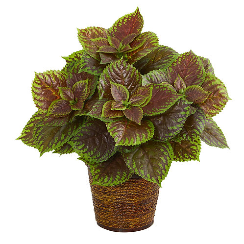 "16""  Coleus Artificial Plant in Basket (Real Touch)"
