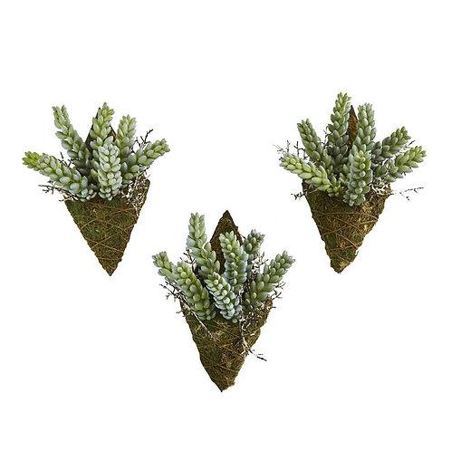 "8""  Sedum Succulent Artificial Wall Decor Plant (Set of 3)"