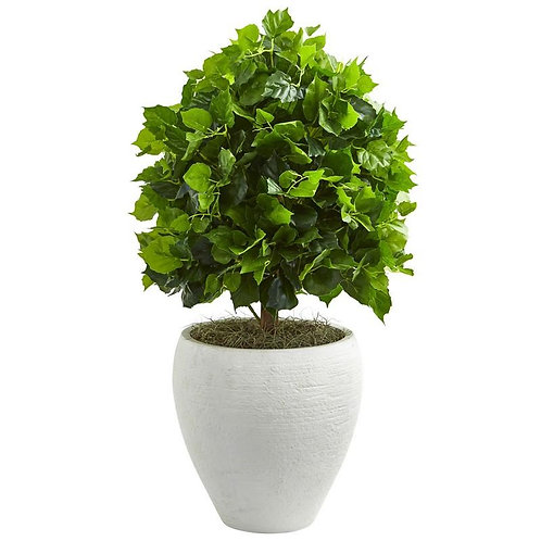 "2.5"" Ficus Artificial Tree in White Planter"