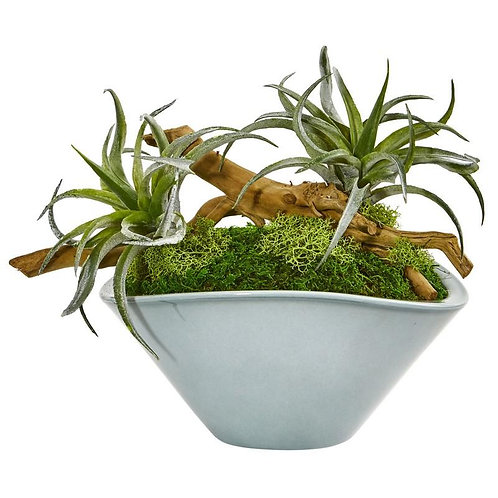 Air Plant Artificial Succulent in Green Vase