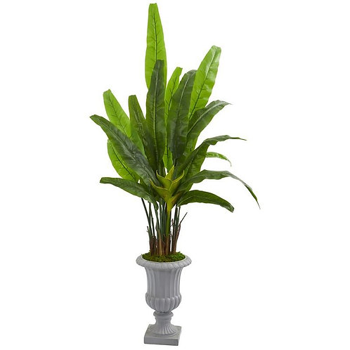 5.5' Travelers Palm Artificial Tree in Gray Urn