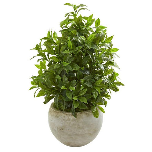 30' Coffee Leaf Artificial Plant in Sandstone Bowl (Real Touch)