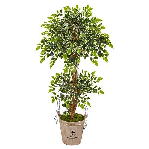 4.5' Variegated Ficus Artificial Tree in Farmhouse Planter