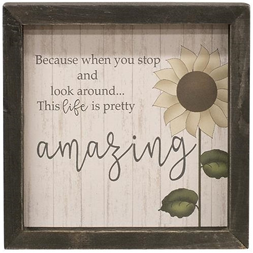 Life Is Amazing Framed Sign
