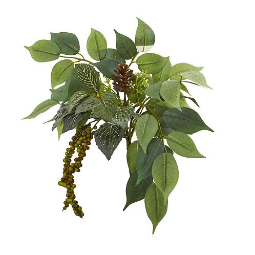 "13""  Mixed Royal Ficus and Fittonia Pick Artificial Plant (Set of 12)"