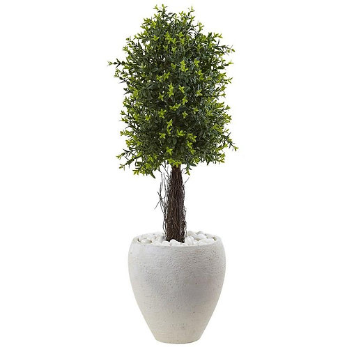 Ixora Topiary with White Planter UV Resistant (Indoor/Outdoor)