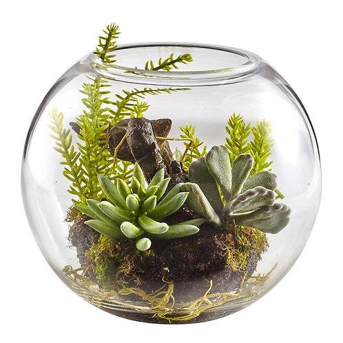 Mix Succulent Garden with Glass Vase