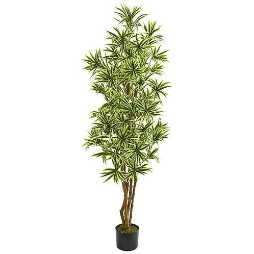 6' Dracaena Reflexa Artificial Plant