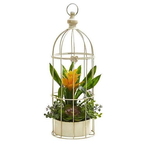 """19""""  Bromeliad & Succulent Artificial Arrangement in Bird Cage"""