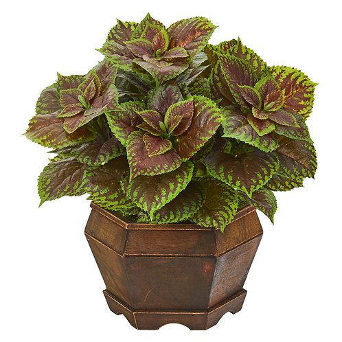 "17"" Coleus Artificial Plant in Decorative Planter (Real Touch)"