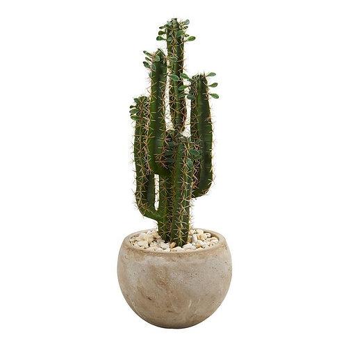 2.5' Cactus Artificial Plant in Bowl Planter