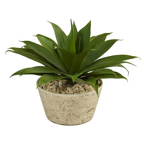 1.5' Agave Succulent Artificial Plant in White Planter
