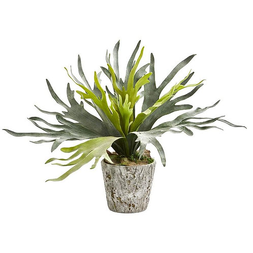 Staghorn Artificial Plant in Weathered Oak Planter