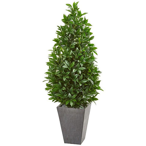 "57""  Bay Leaf Cone Topiary Tree in Slate Planter UV Resistant (Indoor/Outdoor)"