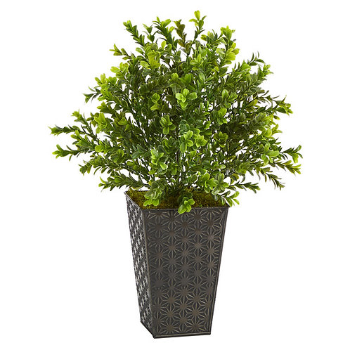 """19"""" Sweet Grass Artificial Plant in Embossed Black Planter"""