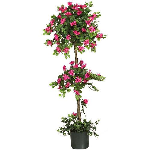 5' Mini Bougainvillea Topiary