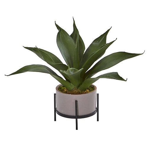 14'' Agave Succulent in Decorative Planter
