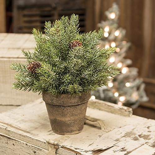 """Frosted Spruce Sphere w/Pot 9"""""""