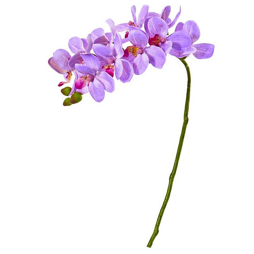 """21""""  Phalaenopsis Orchid Artificial Flower (Set of 6)"""
