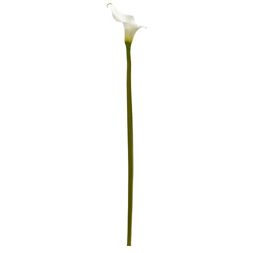 "33"" Calla Lilly Artificial Flower (Set of 4)"