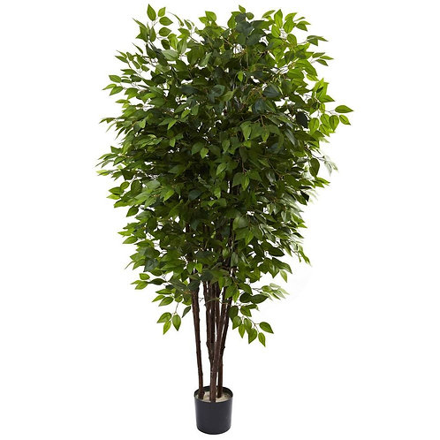 6.5' Deluxe Ficus Tree