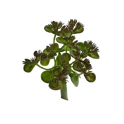 Sedum Succulent Artificial Plant (Set of 12)