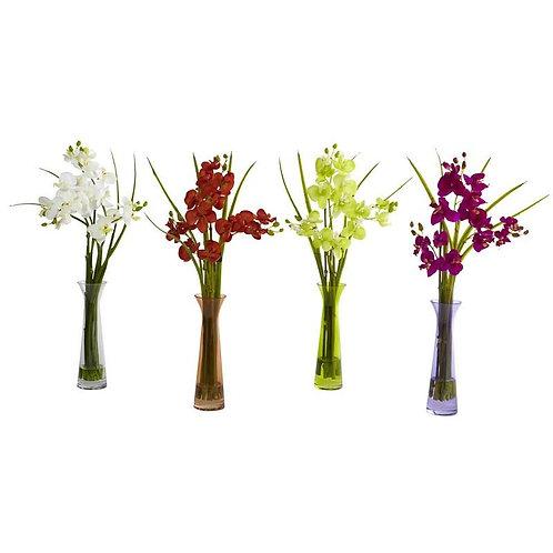 Mini Phal w/Colored Vase (Set of 4)
