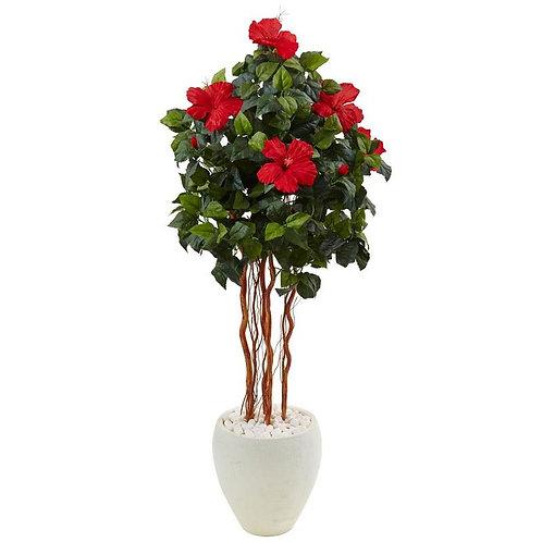 4.5' Hibiscus Tree in White Oval Vase