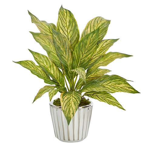 """14"""" Musa Leaf Artificial Plant in White Planter with Silver Trimming"""