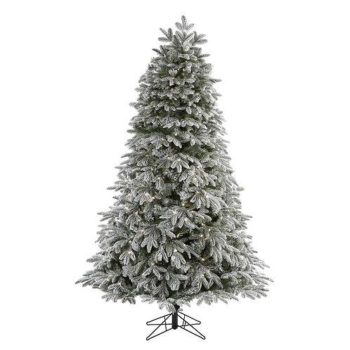 7' Flocked Colorado Mountain Fir Artificial Christmas Tree