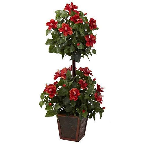 39' Hibiscus Topiary