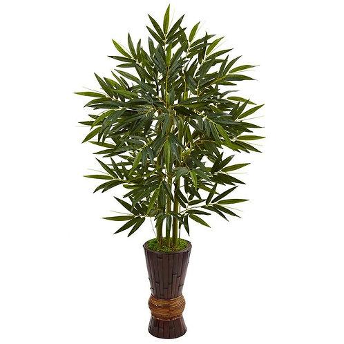 5' Bamboo Tree in Bamboo Planter