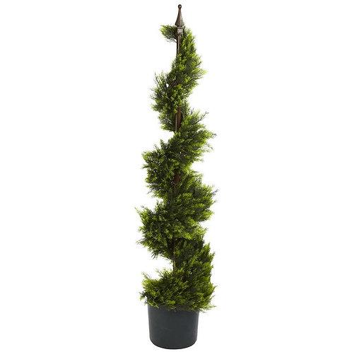 4' Cypress Spirial Silk Tree