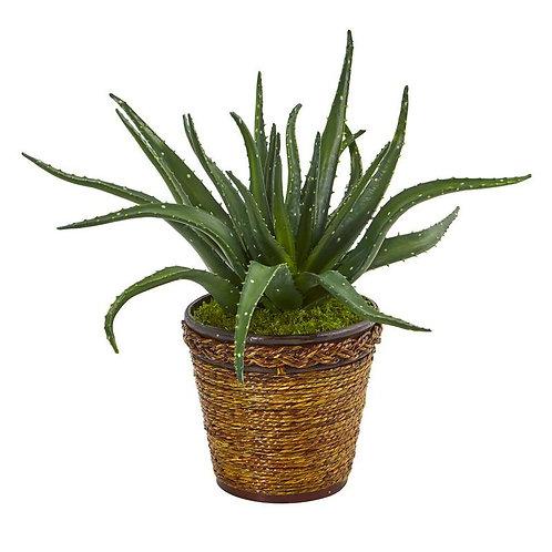"16""  Aloe Artificial Plant in Basket"