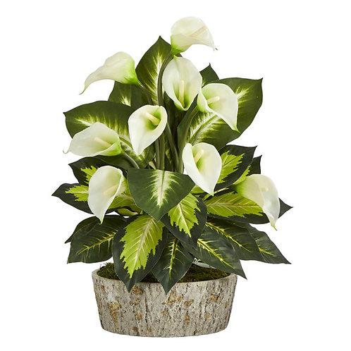 "19"" Calla Lily and Golden Dieffenbachia Artificial Plant"