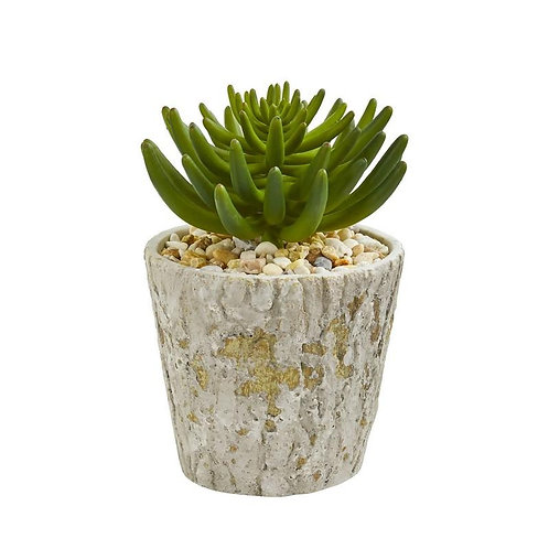 """11""""  Succulent Artificial Plant in Weathered Oak Planter"""