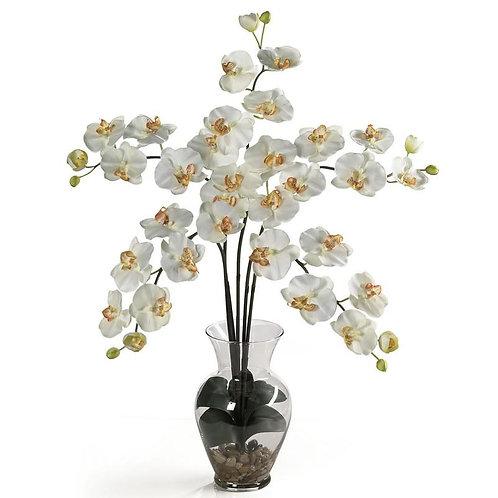 Phalaenopsis Liquid Illusion Silk Flower Arrangement