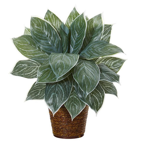 """18""""  Silver Aglonema Artificial Plant in Basket (Real Touch)"""
