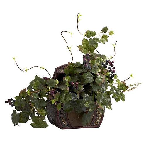 Grape Leaf & Chest Silk Plant