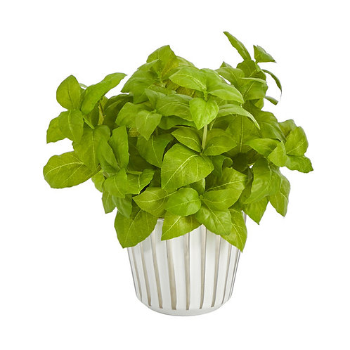 """10"""" Basil Artificial Plant in White Planter with Silver Trimming"""