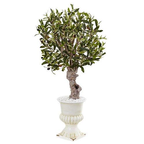 3' Olive Tree in White Urn
