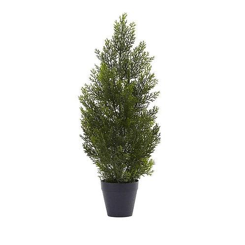 2' Mini Cedar Pine Tree (Indoor/Outdoor)